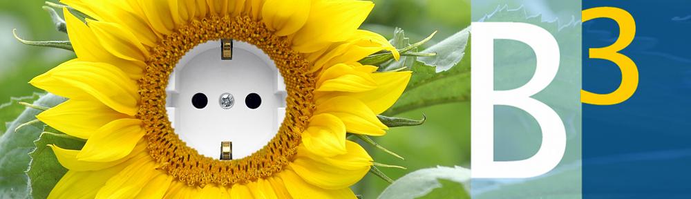 b3-Logo Sonnenblume Biogasberatung